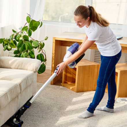 professional carpet cleaner in adelaide