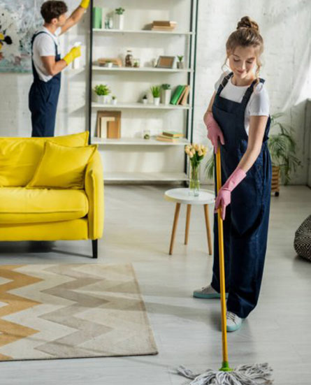 professional cleaners in adelaide